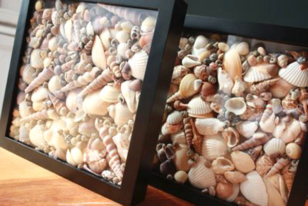 Decorating-ideas-with-seashells2